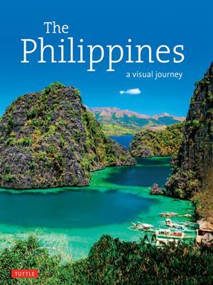 The philippines  : A Visual Journey. Elizabeth V Reyes.