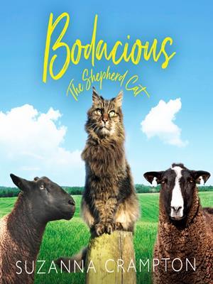 Bodacious  : The Shepherd Cat. Suzanna Crampton.