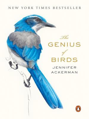 The genius of birds . Jennifer Ackerman.