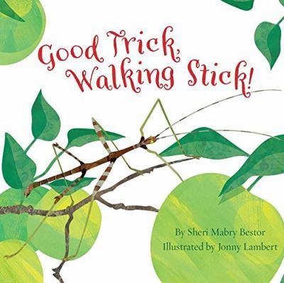 Good trick, walking stick! [electronic resource]. Sheri M Bestor.