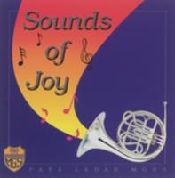 Sounds of joy : Paya Lebar MGSS