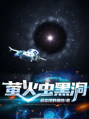 萤火虫黑洞 [electronic resource]. 王宗文.